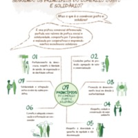 03.a - CJS - Os 7 Princípios do CJS.pdf