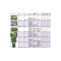 Tabela ampliada de PANC para horta escolar